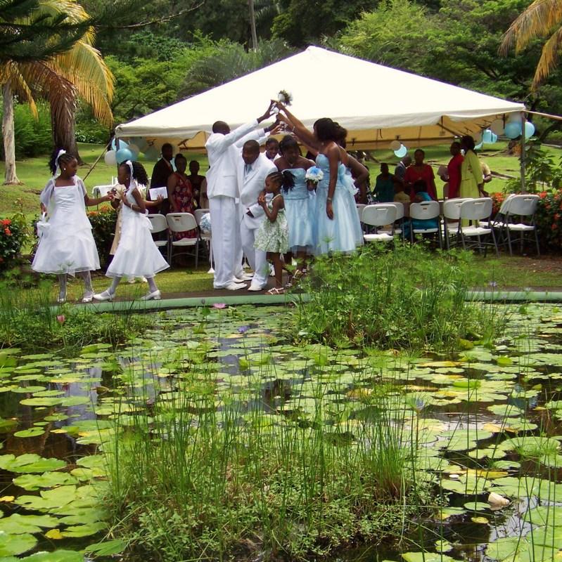 18 Beautiful Botanical Garden Wedding Venues: Botanical Gardens Of St Vincent And